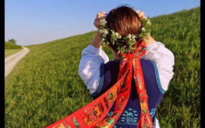 VIDEO: Kries v dvorišću turopoljskog kraja